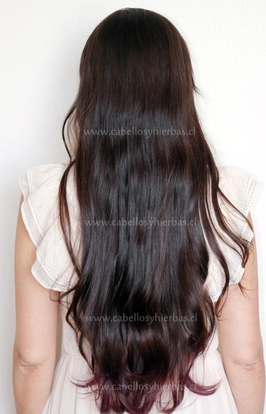 shampoo natural para que crezca el cabello