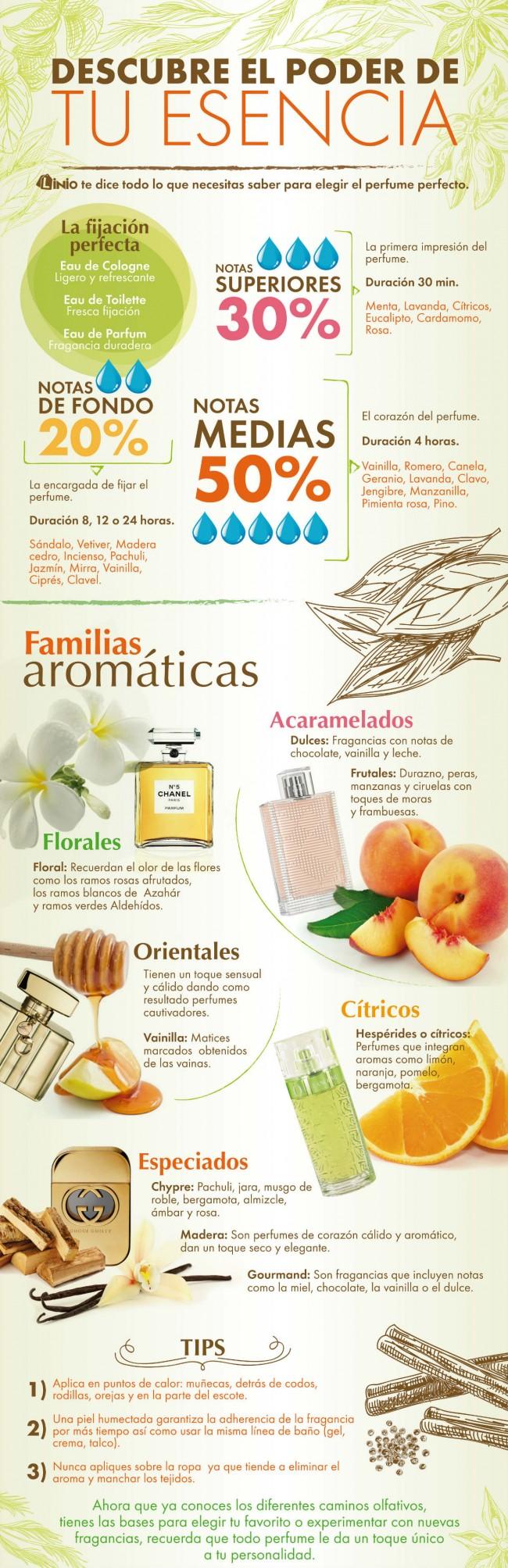 infografía perfumes