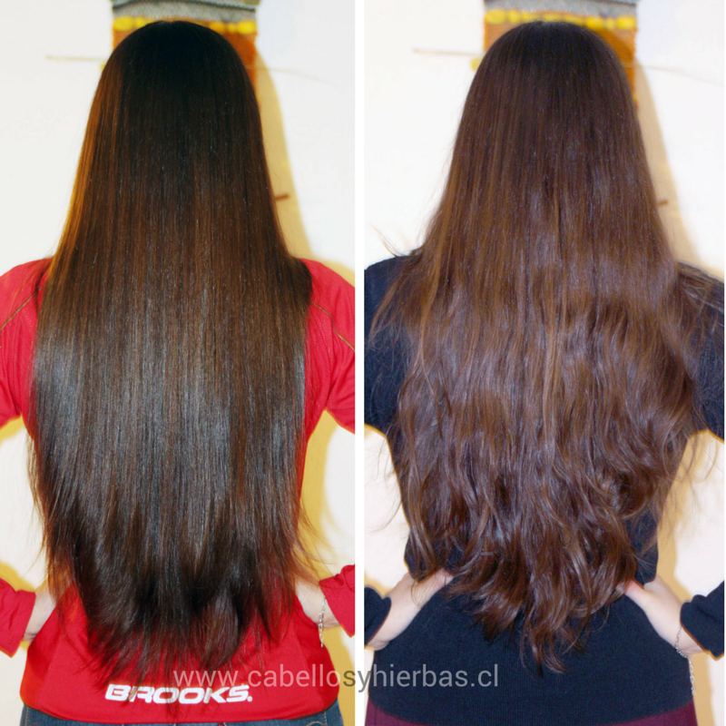 www.cabellosyhierbas.cl